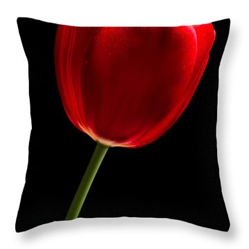 Red Tulip No. 2 By Flower Photographer David Perry Lawrence Throw Pillow by David Perry Lawrence