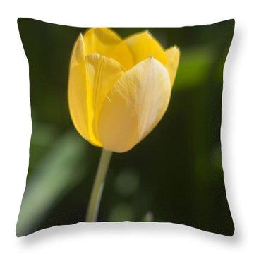 Tulip Portrait Throw Pillow