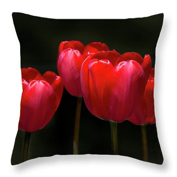 Tulip Quartet Throw Pillow by Michael Friedman
