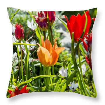 Tulip - The Orange One Throw Pillow