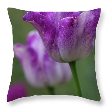 Throw Pillow featuring the photograph Tulip Time 24 by Heather Kenward