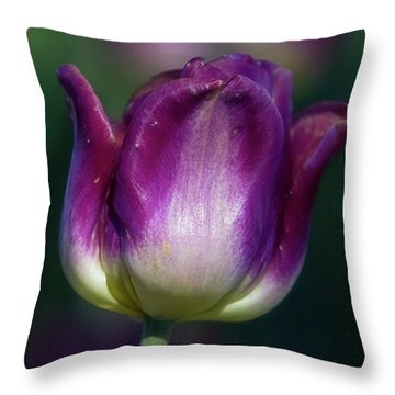 Throw Pillow featuring the photograph Tulip Time 3 by Heather Kenward