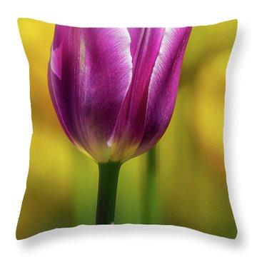 Tulip Time 34 Throw Pillow