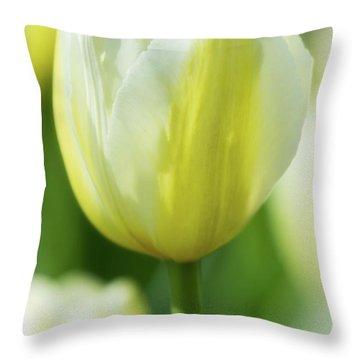 Tulip Time 39 Throw Pillow