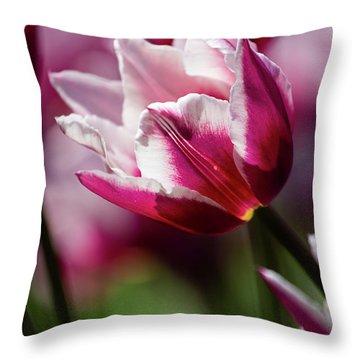 Tulip Time 45 Throw Pillow