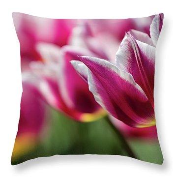 Tulip Time 46 Throw Pillow
