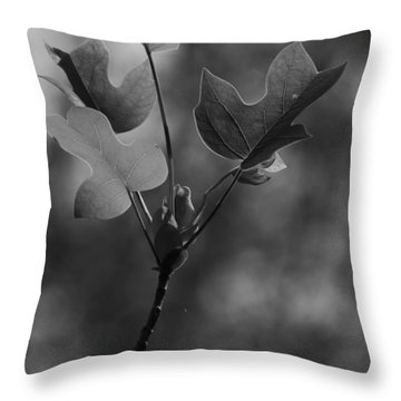 Tulip Tree Leaves In Spring Throw Pillow