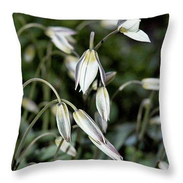 Tulipa Turkestanica Throw Pillow