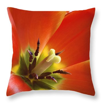 Tuliplicious Throw Pillow