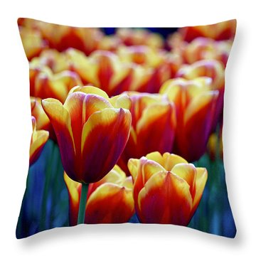 Tulips At Sunset Throw Pillow