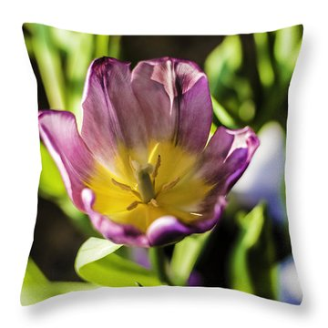 Tulips At The End Throw Pillow