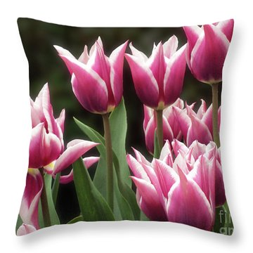Tulips Bed  Throw Pillow by Kim Tran