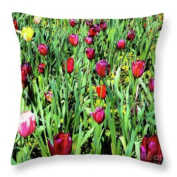 Tulips Blooming Throw Pillow
