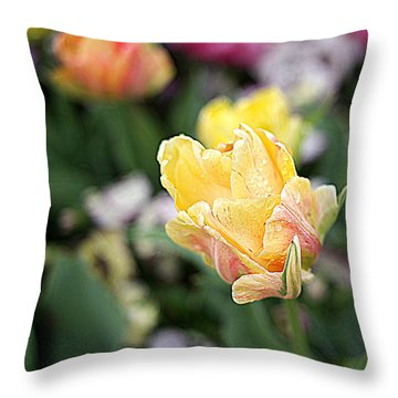 Throw Pillow featuring the photograph Tulips by Diana Mary Sharpton