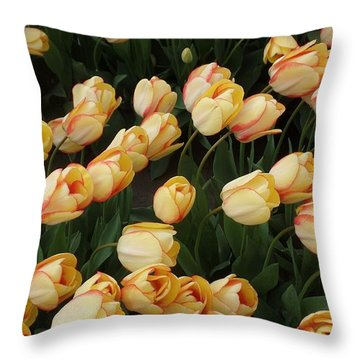 Tulips Edged In Red Throw Pillow by Karen Molenaar Terrell