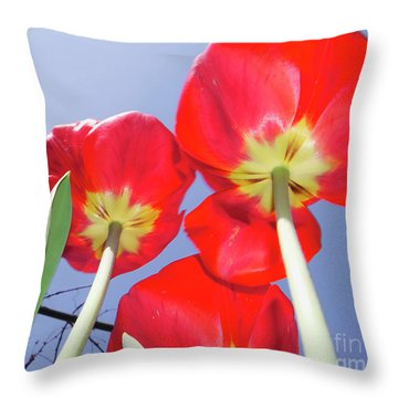 Throw Pillow featuring the photograph Tulips by Elvira Ladocki