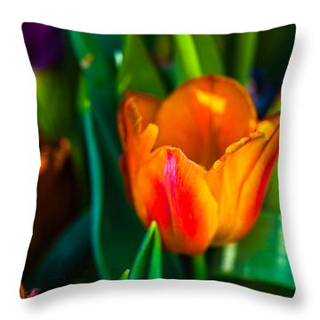 Throw Pillow featuring the photograph Tulips Enchanting 44 by Alexander Senin