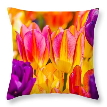 Throw Pillow featuring the photograph Tulips Enchanting 45 by Alexander Senin