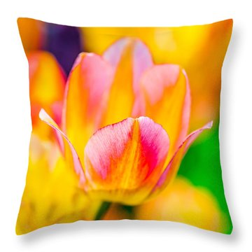 Throw Pillow featuring the photograph Tulips Enchanting 48 by Alexander Senin