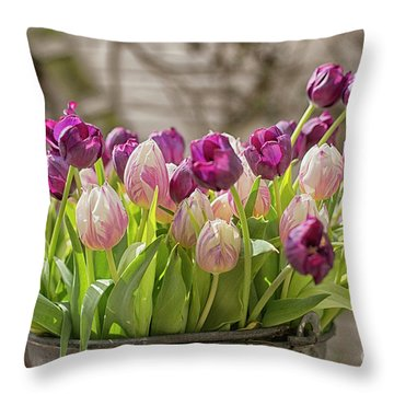 Throw Pillow featuring the photograph Tulips In A Bucket by Patricia Hofmeester