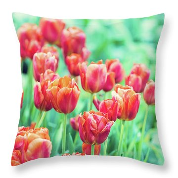 Tulips In Amsterdam Throw Pillow