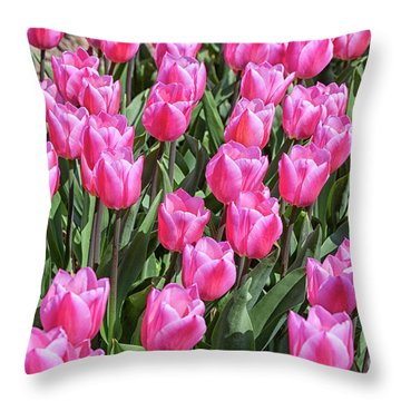 Throw Pillow featuring the photograph Tulips In Pink Color by Patricia Hofmeester
