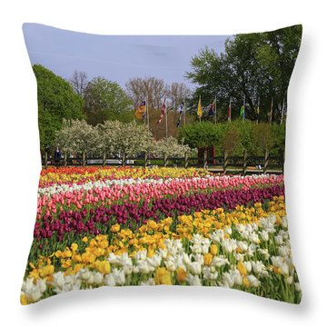 Tulips In Rows Throw Pillow