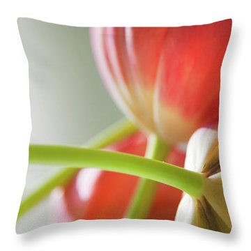 Tulips In The Morning Throw Pillow by Theresa Tahara