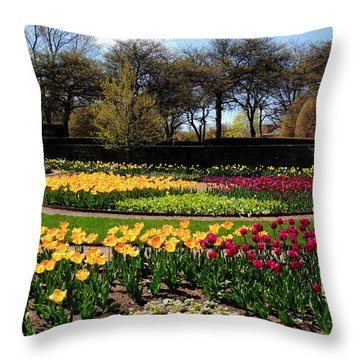 Tulips In The Spring Throw Pillow
