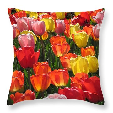 Tulips Like Sunlight Throw Pillow