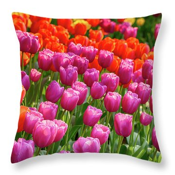 Throw Pillow featuring the photograph Tulips Mean Spring by Mary Jo Allen