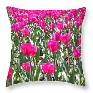 Throw Pillow featuring the photograph Tulips by Mary-Lee Sanders