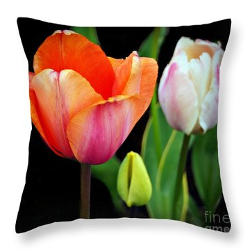 Throw Pillow featuring the photograph Tulips On Black by Patricia Strand
