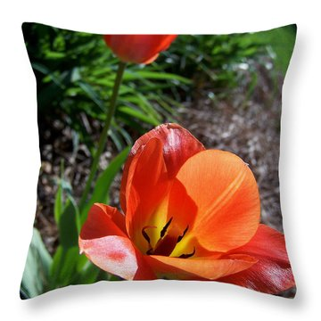 Throw Pillow featuring the photograph Tulips Wearing Orange by Sandi OReilly