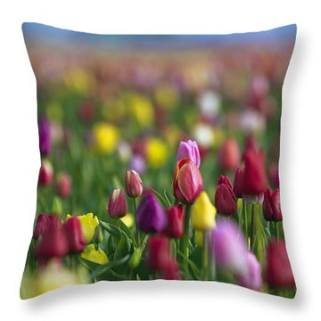 Tulips Throw Pillow by William Lee