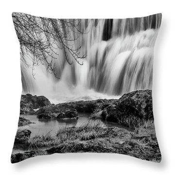 Tumwater Falls Park Throw Pillow