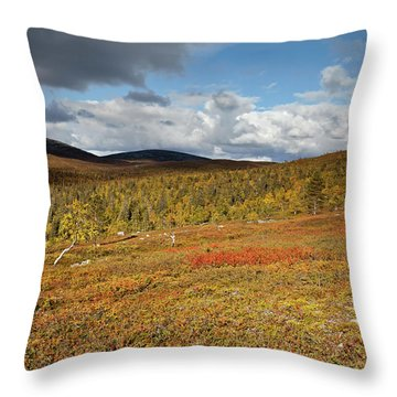 Tundra Throw Pillow