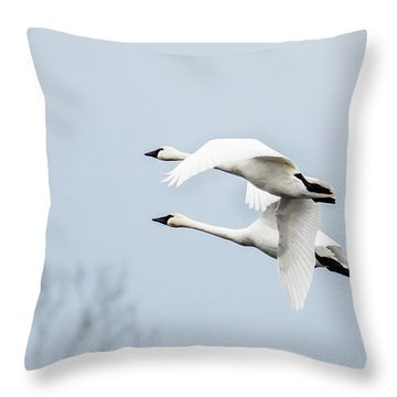 Tundra Swan Lift-off Throw Pillow