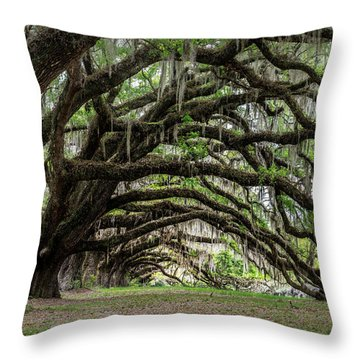 Throw Pillow featuring the photograph Tunnel In Charleston by Jon Glaser