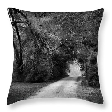 Tunnel Of Lydia Throw Pillow by Michael Thomas