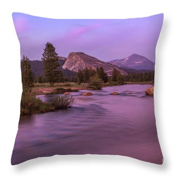 Tuolumne Meadow Throw Pillow