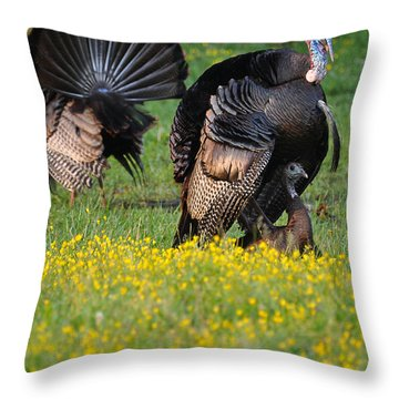 Turkey Love Throw Pillow by Todd Hostetter