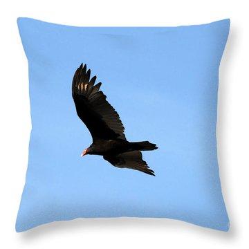 Turkey Vulture Throw Pillow by David Lee Thompson