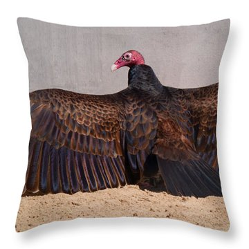 Turkey Vulture Spreading Wings Throw Pillow