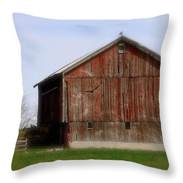 Turkey Vultures Hovering Around The Barn Throw Pillow