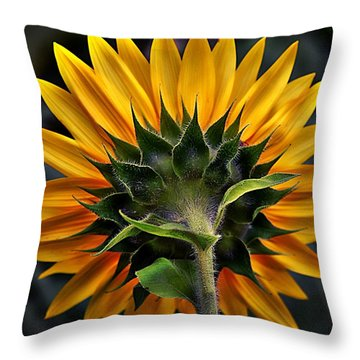 Turn Around In Time Throw Pillow
