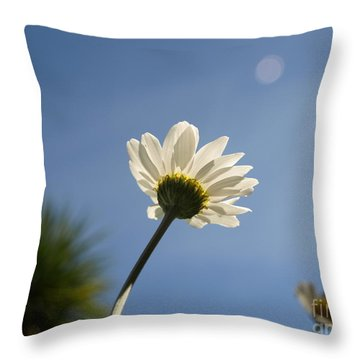 Turn To The Light Throw Pillow
