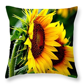 Turn To The Sun For Comfort Throw Pillow