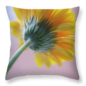 Turn Your Face To The Light Throw Pillow