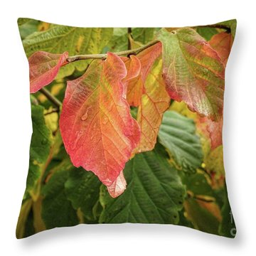 Throw Pillow featuring the photograph Turning by Peggy Hughes